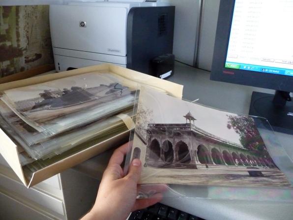 Cataloging 19th-century Raja Deen Dayal albumen photographs at the Harvard Fine Arts Library.