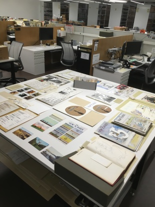 Steinberg papers_show and tell